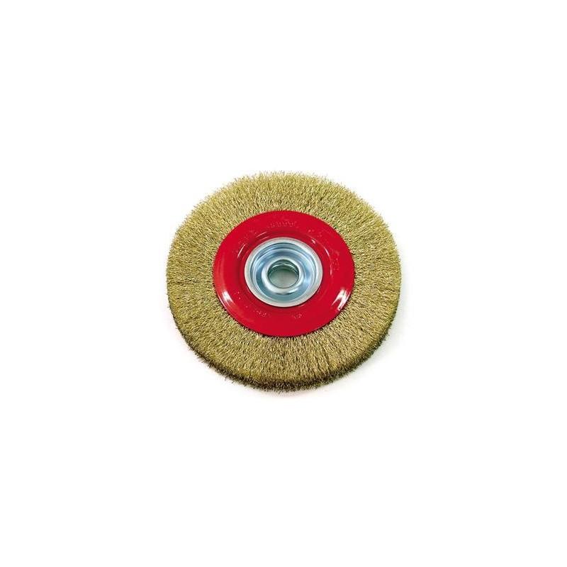Cepillo circular DOGO 6x1